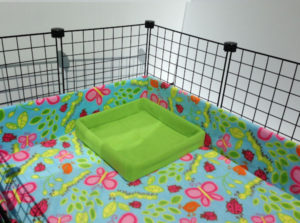 litterbox-lime
