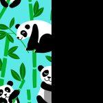 Pandas-Black