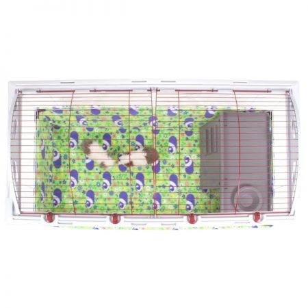 Hagen Living World XL with Meadow Pig Piggy BedSpread